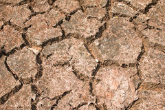 Crack soil on dry season Stock Photo