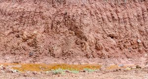 Crack soil on dry season, Effect of Global worming Royalty Free Stock Image
