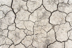 Crack soil on dry season, Global warming / cracked dried mud / Dry cracked earth background / The cracked ground, Ground in drough Royalty Free Stock Photos