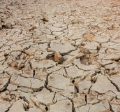 Crack soil on dry season, Global warming effect. Royalty Free Stock Photography