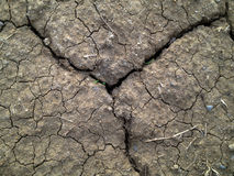 Crack soil on dry season with some grass.  Stock Photography
