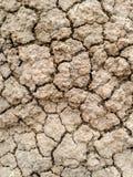 Crack soil Royalty Free Stock Photos