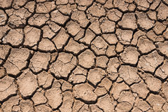 Crack surface of clay in hot terrain Royalty Free Stock Image