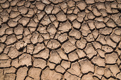 Crack surface of clay in hot terrain Stock Photos