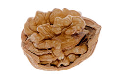 Crack walnut Stock Images