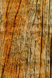 Crack wood. Crack on old wood background Royalty Free Stock Photos