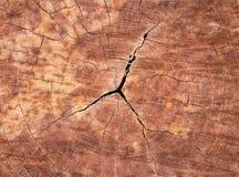 Crack wood backgroun. Stock Photography