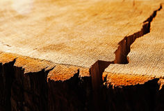 The crack on wooden surface in sunlight Stock Photography