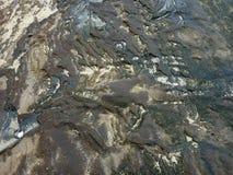 Cracked выдержал утес лавы с битами песка и лужицами wat Стоковое Фото