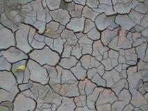 cracked Fotografia Stock Libera da Diritti