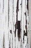 Cracked aged surface white painted wooden texture vertical background Royalty Free Stock Image