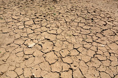 Cracked Arid soil Royalty Free Stock Photography