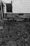 cracked asfalt Royaltyfri Fotografi