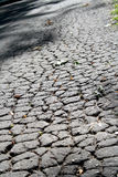 Cracked asphalt pavement. The  background with cracked asphalt pavement Royalty Free Stock Image