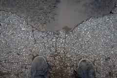 Cracked asphalt Stock Photography