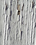 Cracked Background 40 Stock Photos