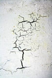 Cracked background Stock Photos