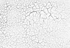 Cracked background texture Stock Photography