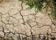 Cracked and barren ground Royalty Free Stock Image