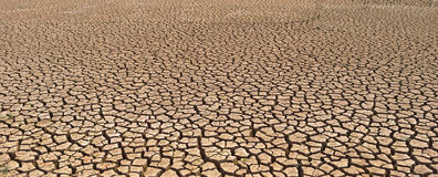 Cracked and barren ground Stock Photography
