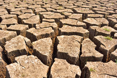 Cracked and barren ground Stock Images