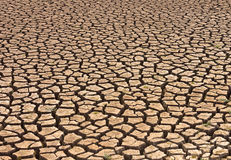 Cracked and barren ground Royalty Free Stock Photography