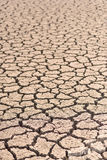 Cracked and barren ground. Royalty Free Stock Photos