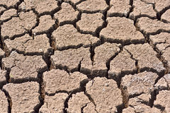 Cracked and barren ground. Royalty Free Stock Images