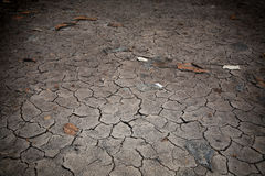 Cracked and barren ground Royalty Free Stock Photo