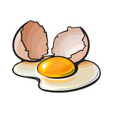Cracked, broken and spilled chicken egg, sketch style vector illustration. Isolated on white background. Hand drawn, sketched raw, uncooked chicken egg and vector illustration