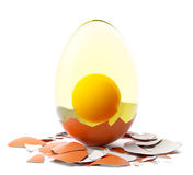 Cracked brown egg. Royalty Free Stock Photo