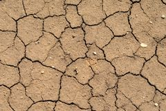 Cracked brown ground surface Royalty Free Stock Photography