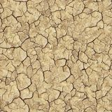 Cracked Brown Soil. Seamless Texture. Stock Photos