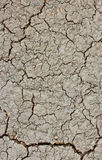 Cracked Brown Soil. Royalty Free Stock Photos