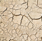Cracked clay ground Stock Photography