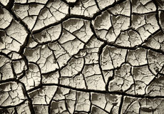 Cracked clay ground Stock Photo
