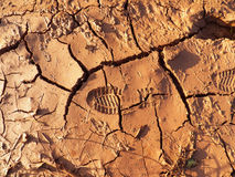 Cracked clay ground background Royalty Free Stock Photo