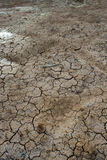 Cracked clay ground into the dry lake Stock Photography