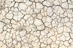 Cracked clay ground in the dry season Stock Images