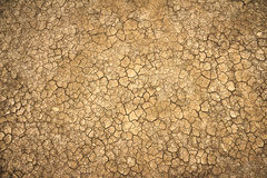 Cracked clay ground into the dry season Royalty Free Stock Photography