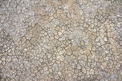 Cracked clay ground into the dry season Royalty Free Stock Photos