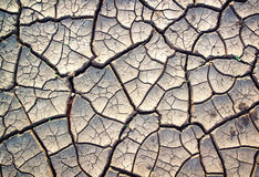 Cracked clay ground Royalty Free Stock Photo