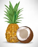 Cracked coconut and pineapple Royalty Free Stock Photo
