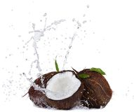 Cracked coconuts in water splash on white Stock Photos