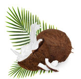 Cracked coconuts on white background Royalty Free Stock Images