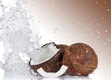 Cracked coconuts on white background. Close-up Stock Image
