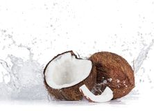 Cracked coconuts on white background. Cracked coconuts with water splash on white background, close-up Royalty Free Stock Photos