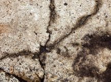 Cracked concrete surface Stock Images