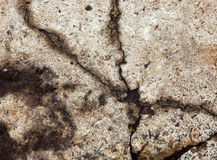 Cracked concrete surface Royalty Free Stock Photo