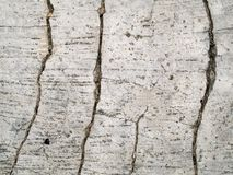 Cracked concrete texture. A background of cracked concrete texture Royalty Free Stock Image